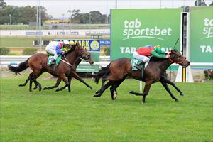 Escado wins on debut at Cranbourne in May 2012