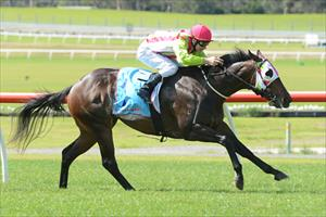 Mezeray Miss makes it back to back wins with a city victory at Sandown