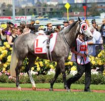 The Big Steel parades before the Grey's Race on Oaks Day