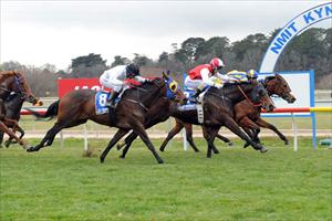 Stynes wins at Kyneton in June 2012 at his first run for Matt Laurie Racing